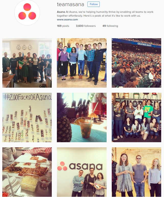 Team Asana Instagram