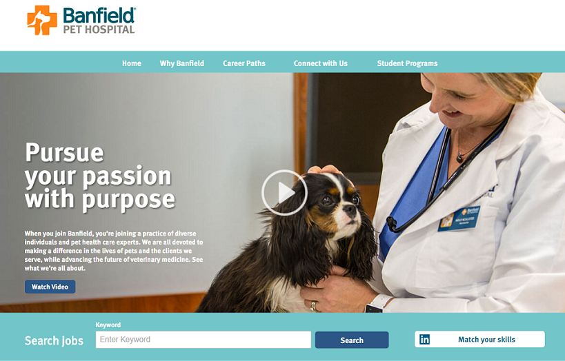 Banfield company career site landing page