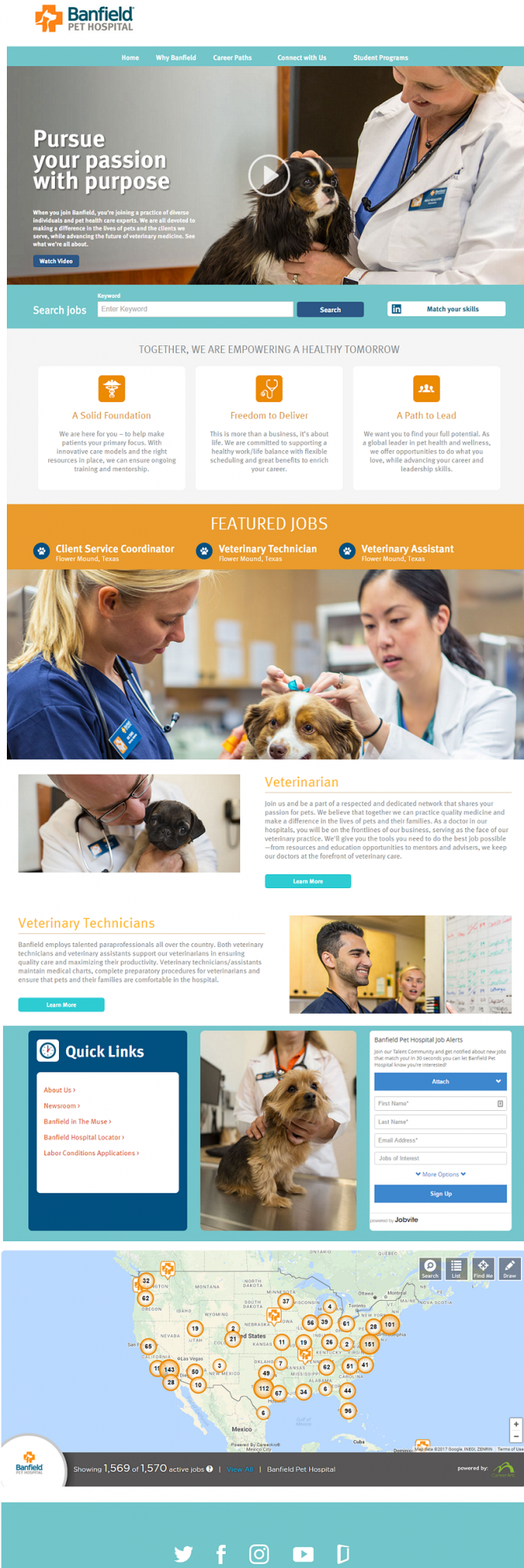 Best Company Career Sites Banfield Pet Hospital 2 - Ongig Blog