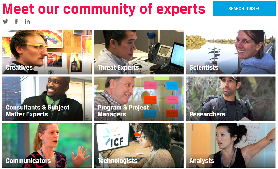 Meet our experts section of ICF company career site