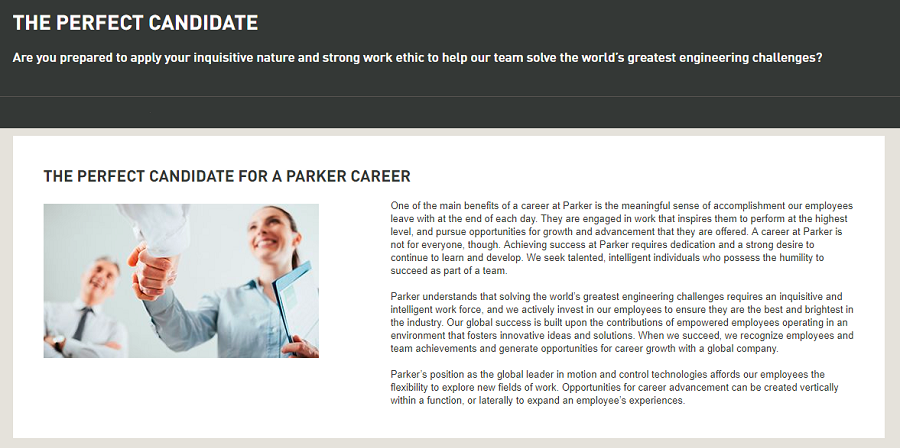 Parker Hannafin describes their perfect candidate on their career site
