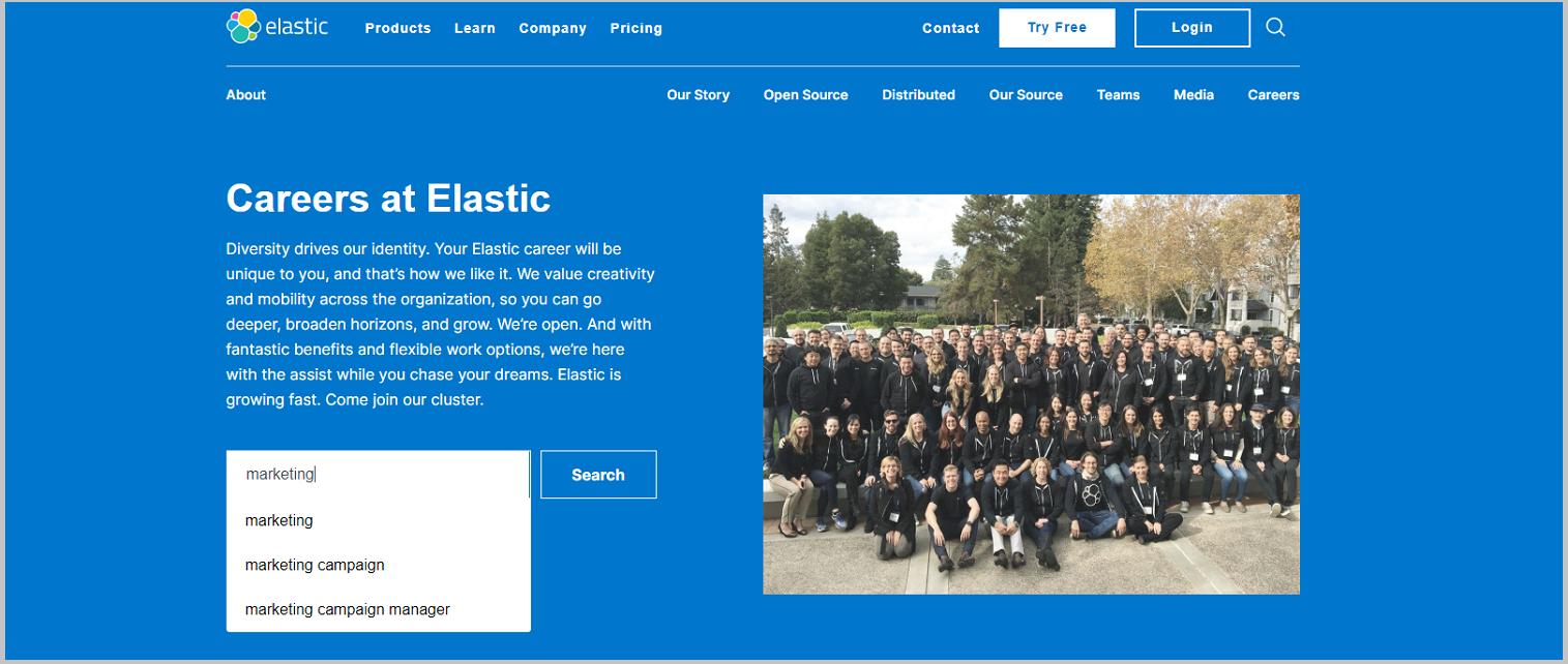 Job search on Elastic company career site