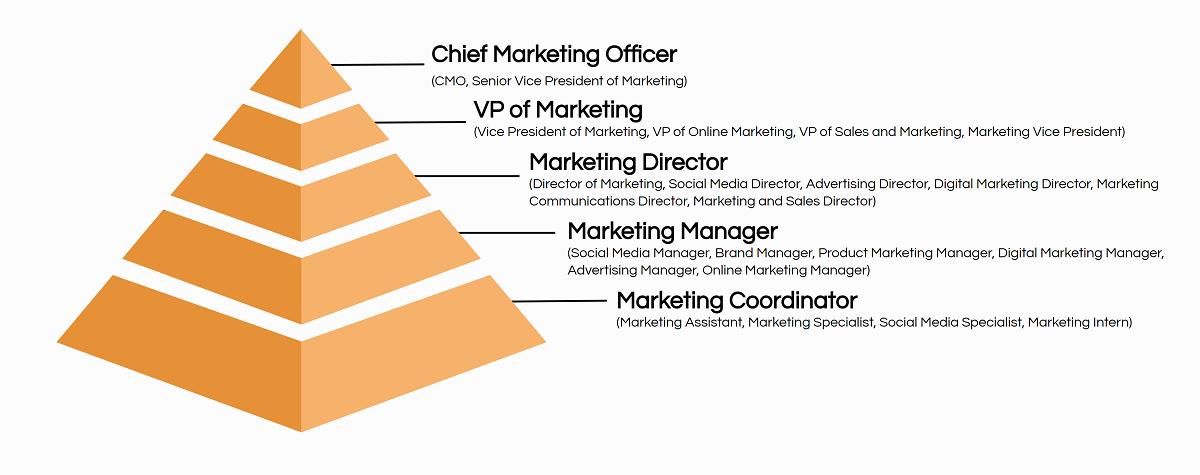 marketing job titles hierarchy