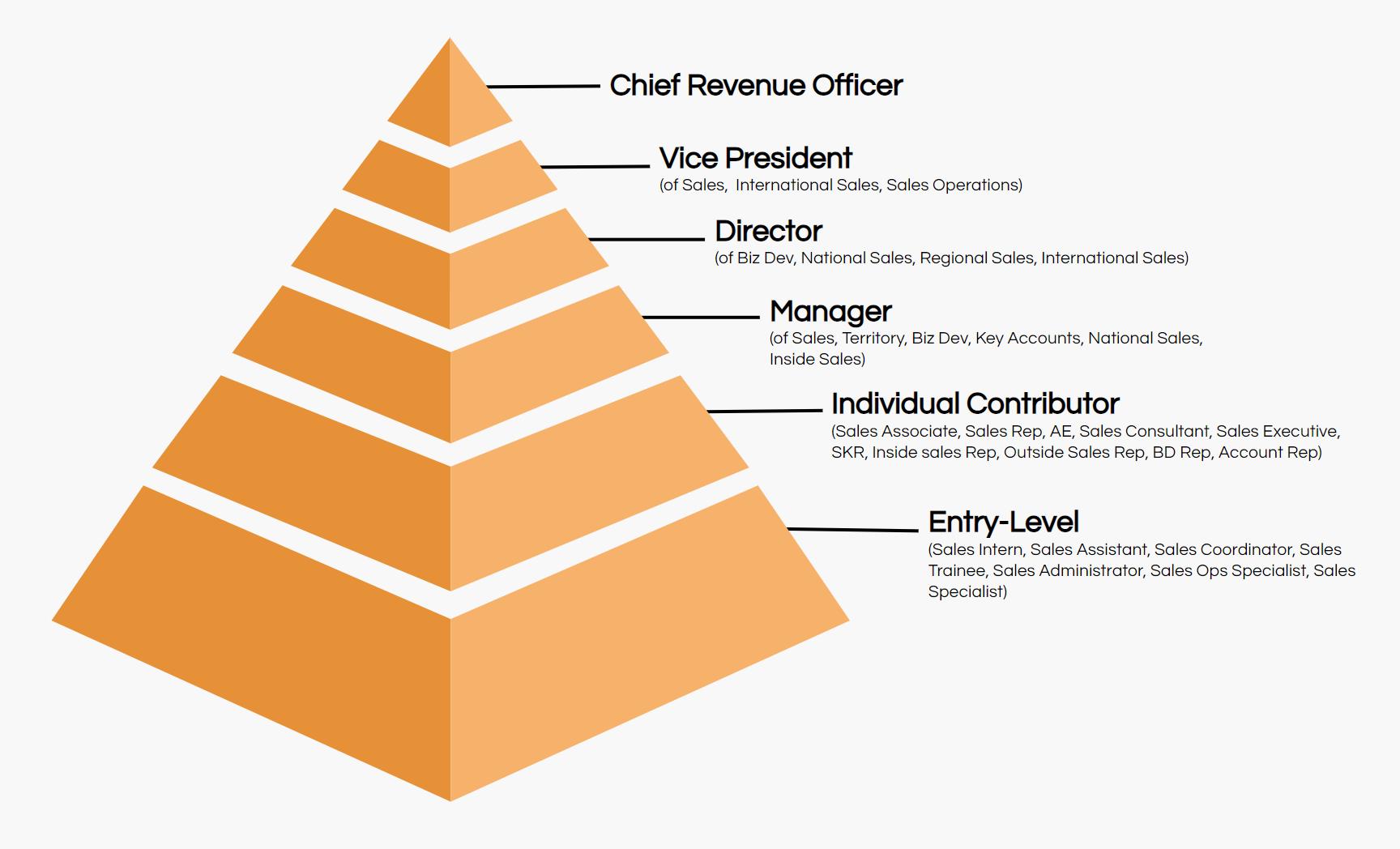 sales job title hierarchy