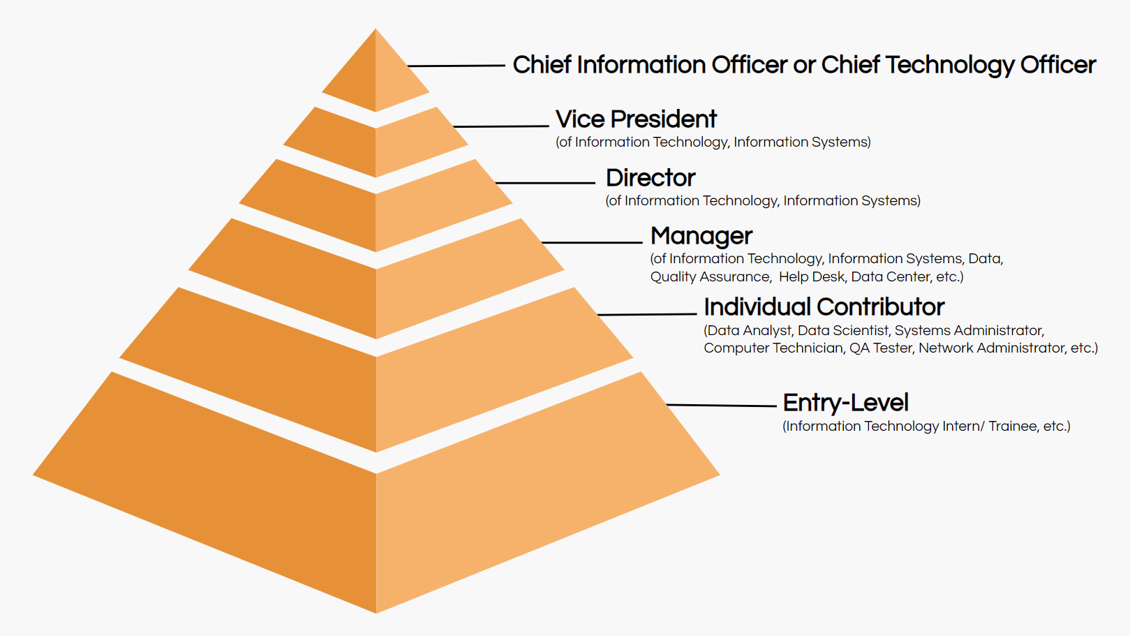 IT job titles hierarchy