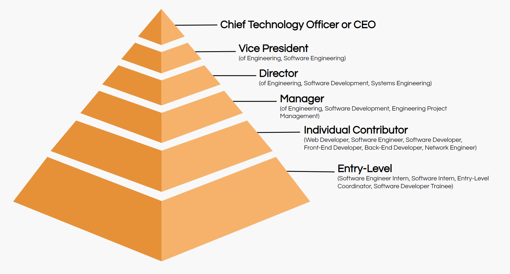 software developer job title hierarchy