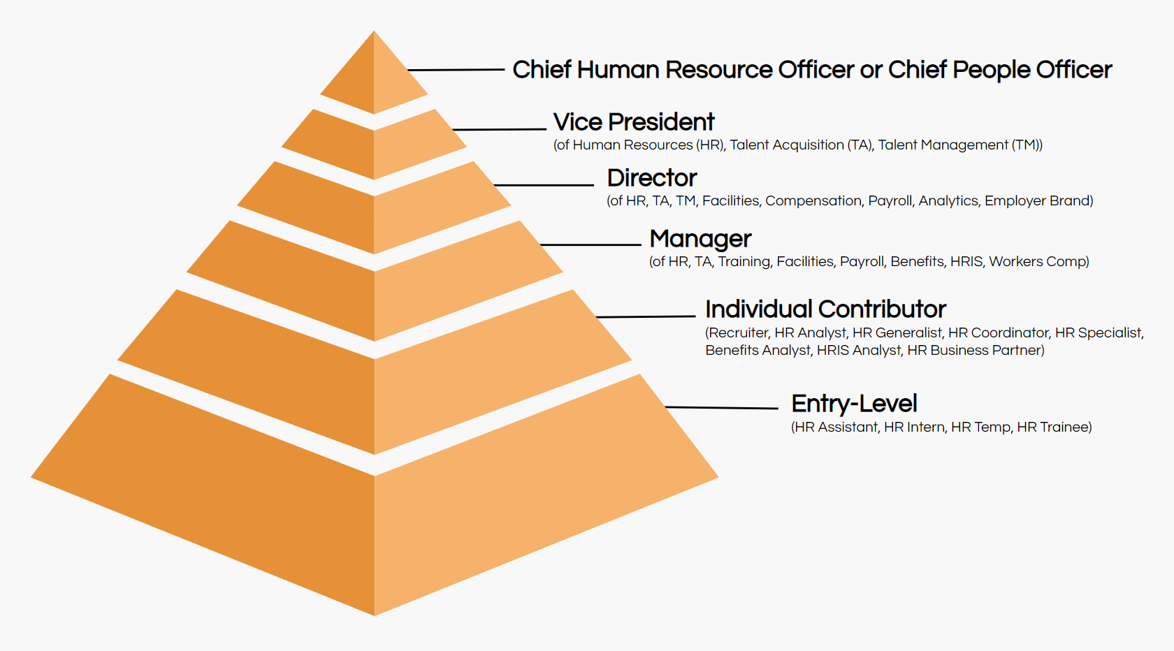 human resources job titles hierarchy
