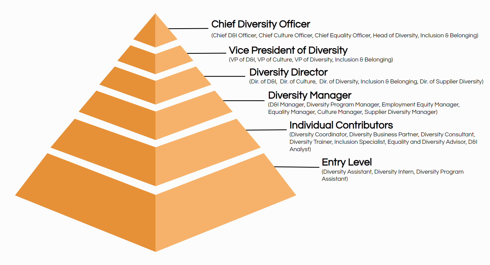 diversity title hierarchy org chart