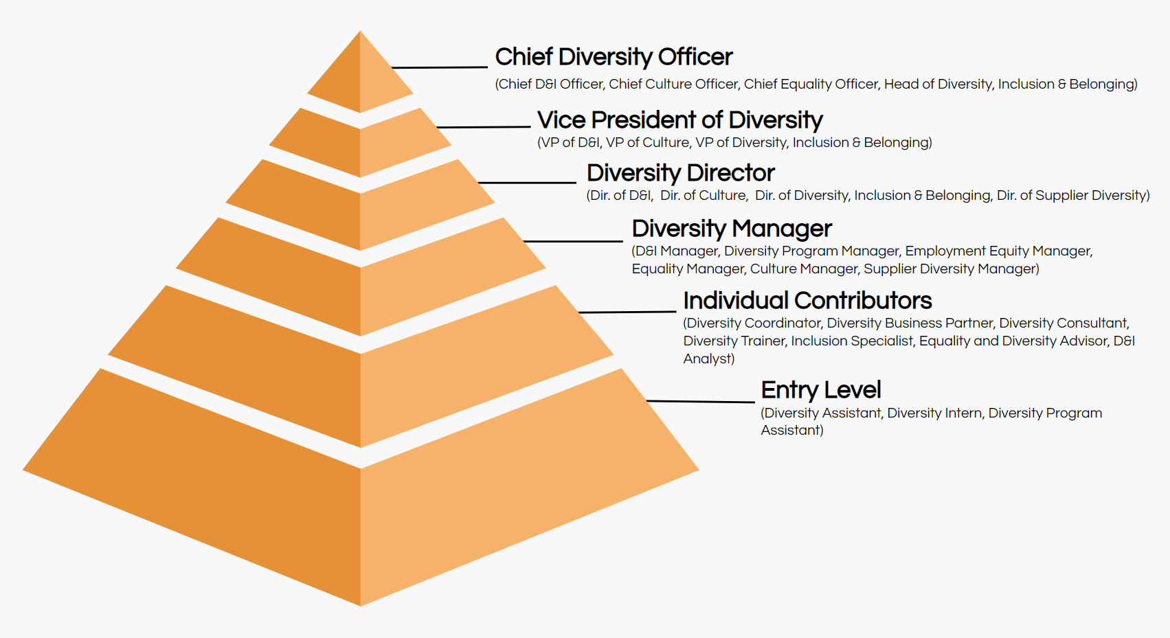 diversity job titles hierarchy