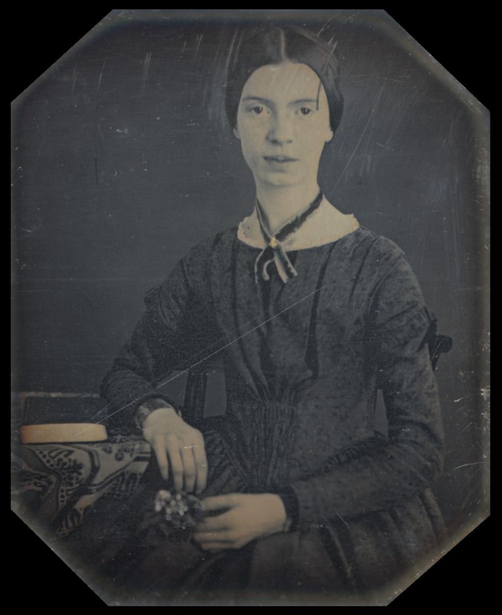 Emily Dickinson Autistic