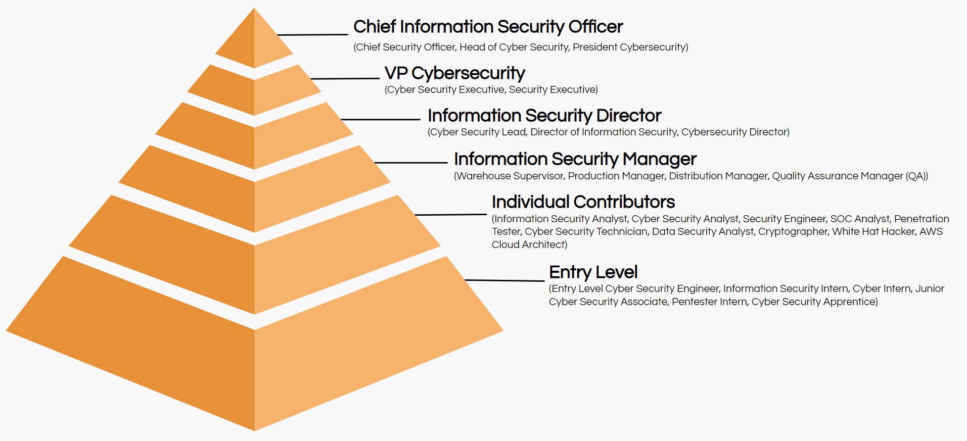 cyber security job title hierarchy