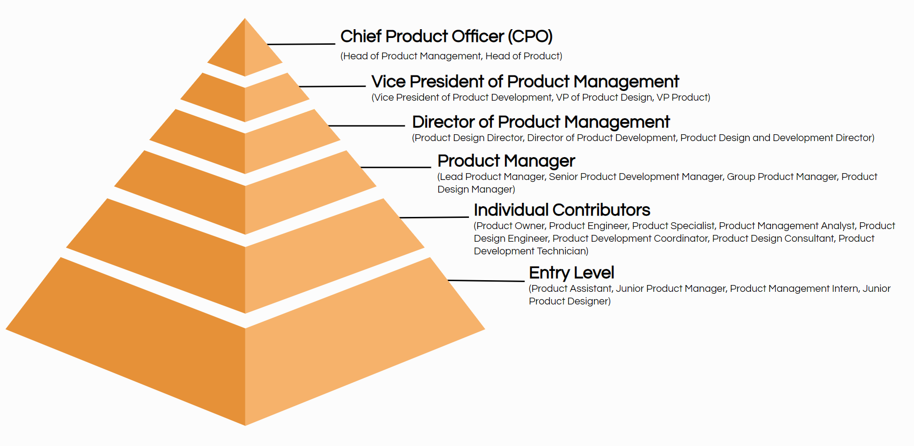 Top 20 Product Management Job Titles Descriptions Ongig Blog