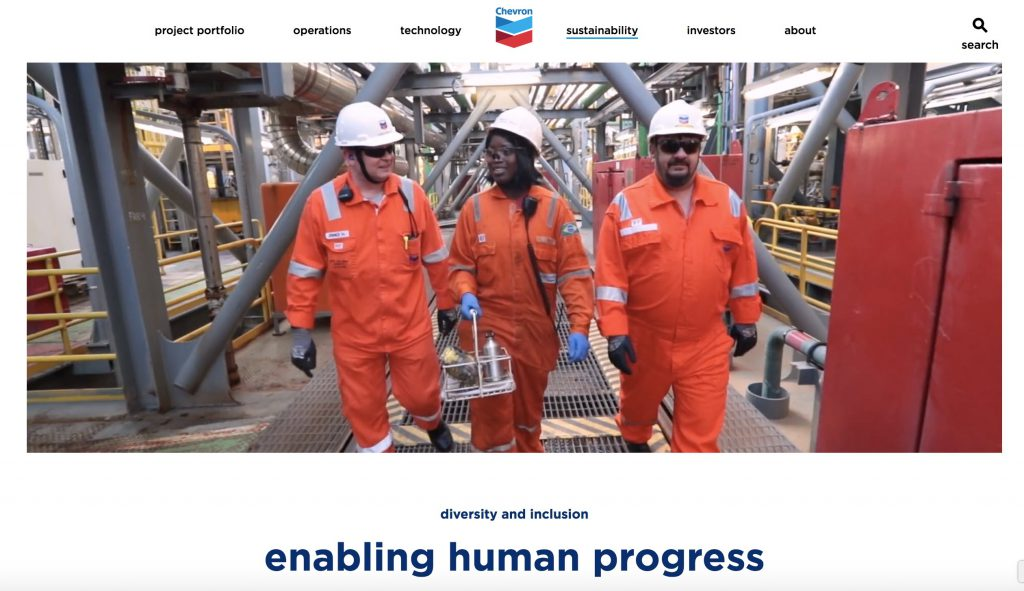 Chevron Diversity Inclusion council mission statement