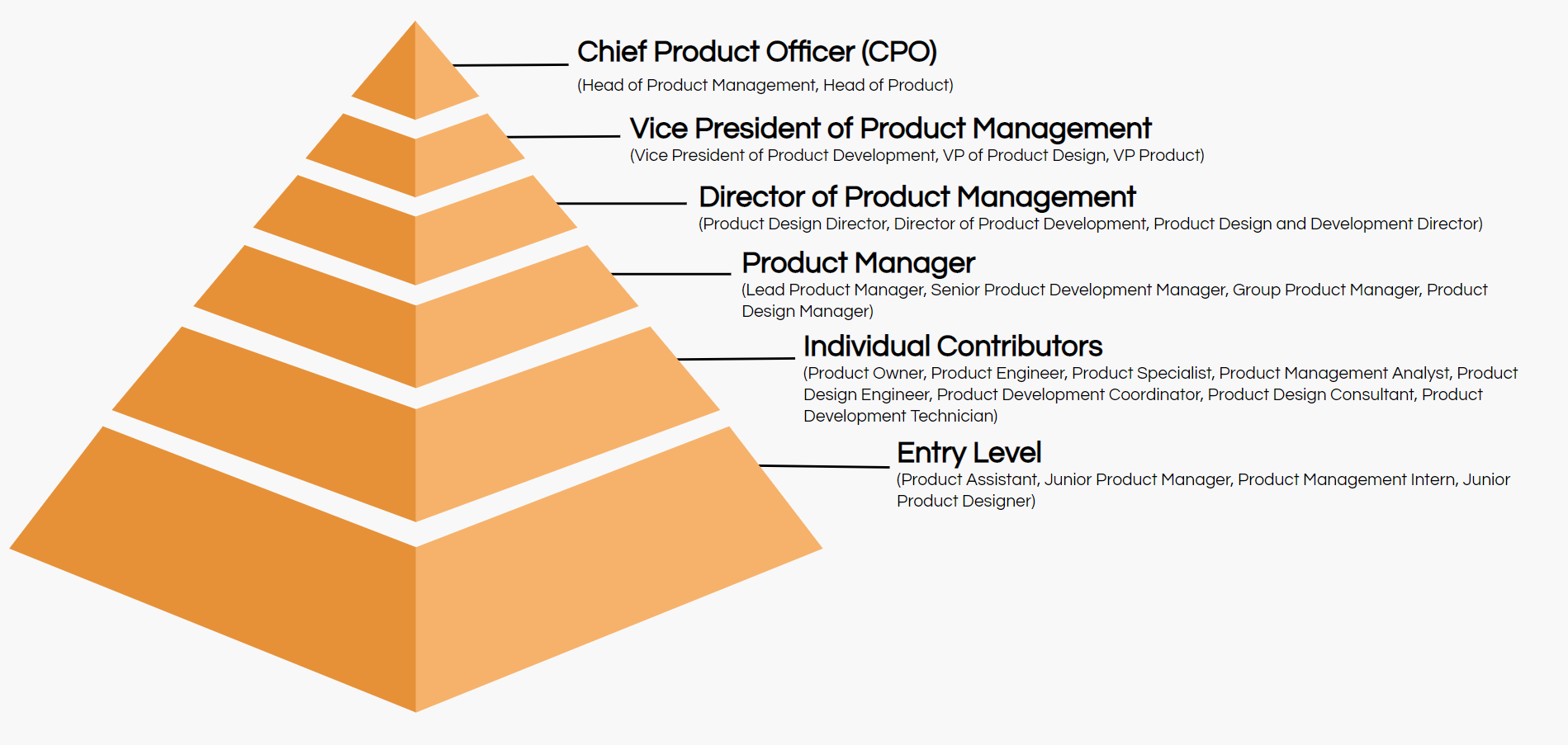 product management job titles hierarchy