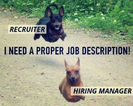 recruiter meme jd