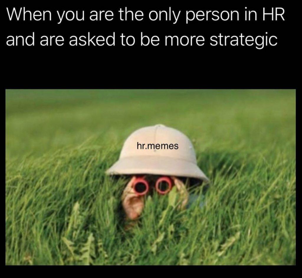 hr meme funny