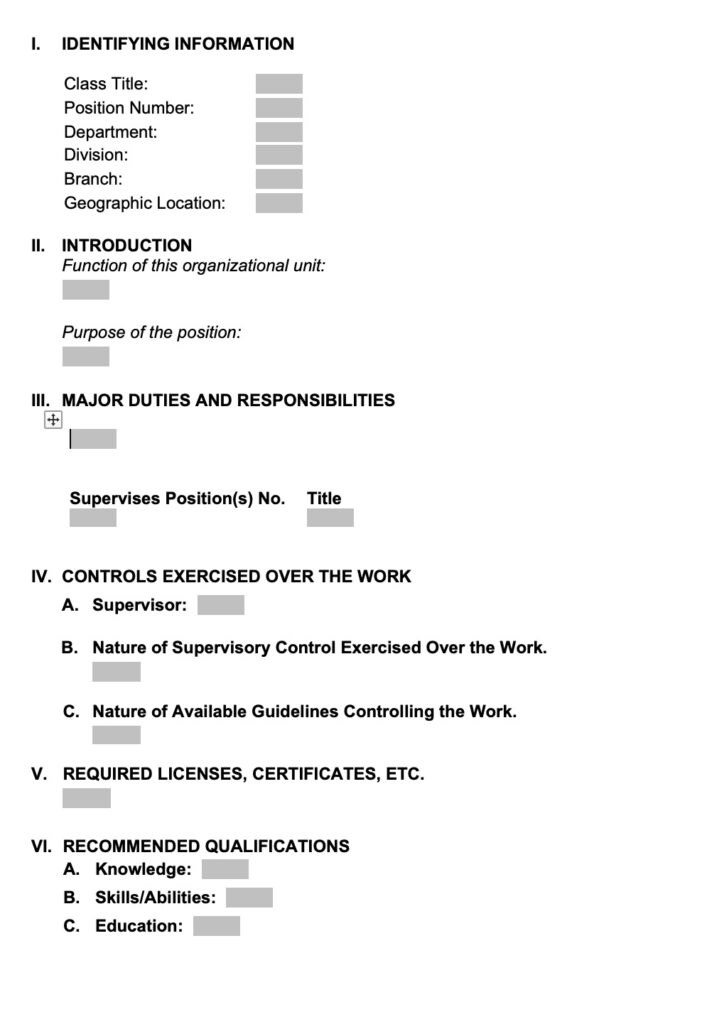 Position-Description-format